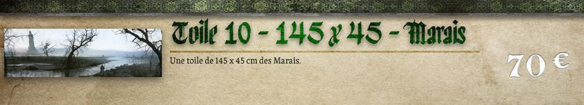 Toile 10 - Marais 145 x 45